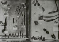 Vitrine sur la musique dans l'exposition sur les collections du Tchad