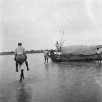 D° [Sur la Bénoué,]  Griaule et Guyot regagnent le bord [se font porter sur le dos pour traverser l'eau] (5/8/36)