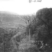 Caravane mulets (vallée menant au Nil)