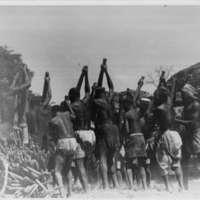 Sanga - Battage du petit mil par les hommes à midi, sur l'air située au S.E. d'Ogodunu ( près caverne des masques)