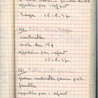 Page 59. Sauterelles [Carnet insectes Dogon]