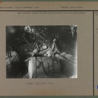 Dege statuette, tambours et autels