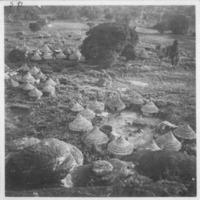 Fodebugu - Vue prise d'en haut d'un carré situé au pied de la  montagne.