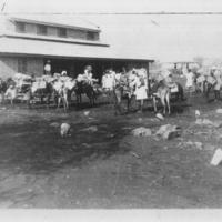Rest house de Gallabad. Caravanes de mulets s'apprêtant au départ