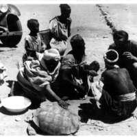 28-29  - Gringoire et indigène