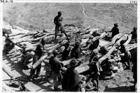 id [Gogoli ] -  Construction du toguna , on enlève les anciens bois